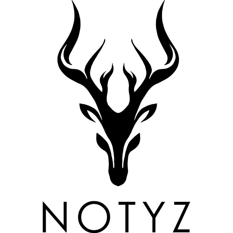 Notyz